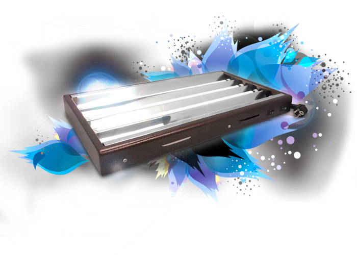 T5 propagator light 96W + four 6400°K tubes